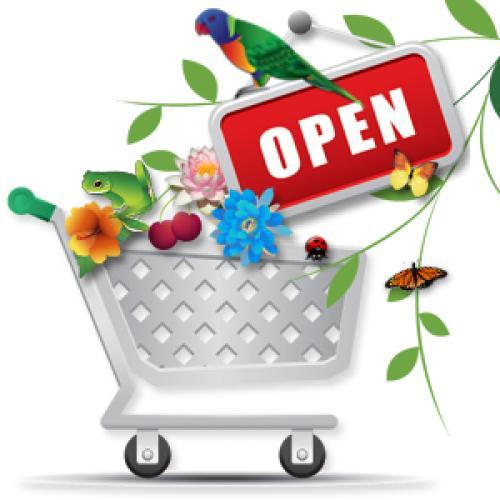 لیست مغازه و فروشگاههای تربت حیدریه